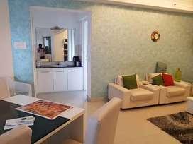 Kadavanthra  fully furnished super luxury flat for rent