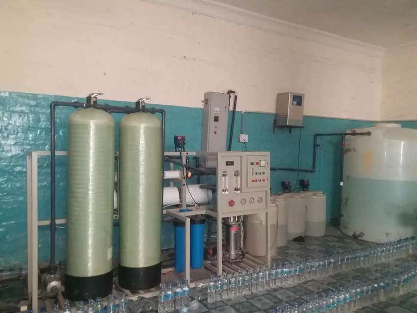 Mineral's Water Plant 0