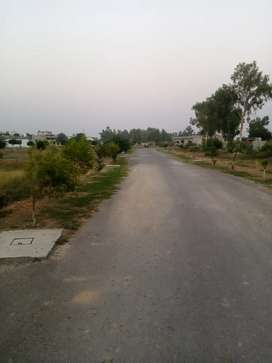 16 kanal plot for farmhouse in sapring meadows