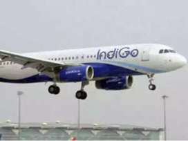 indigo airlines Hiring for full time job on roll vacancy  Airlines