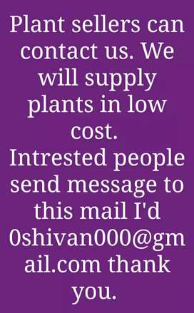 Plants for sale..