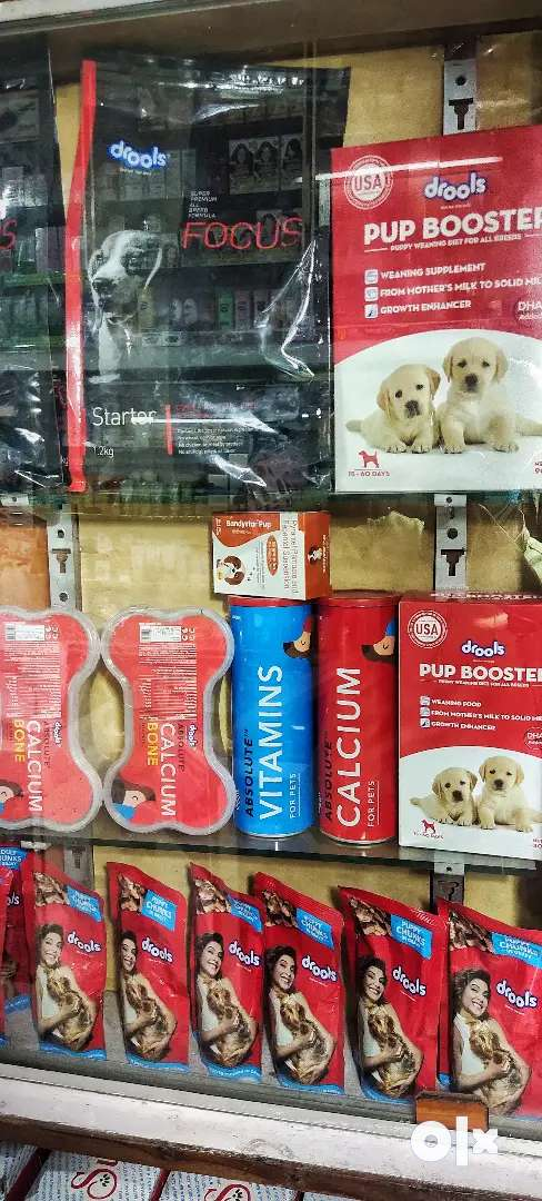Pets All Food & Accessories In Lowest Price