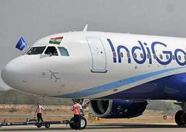Hiring for ground staff in IndiGo Airlines limited site
