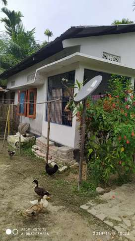 2khota 5losa For Sale With Assam Type House