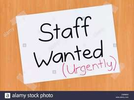 Wanted lady staff