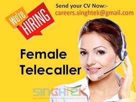 Female Telecaller for IT Comapny at Vaishali Nagar