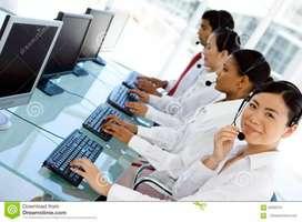 BPO Customer Care Executive