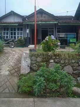 Rumah kampung kaligading boja