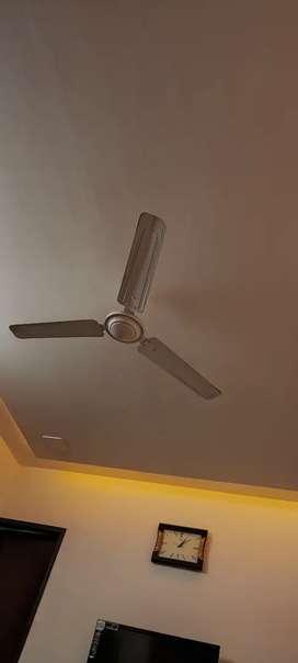 4 Fan for sale