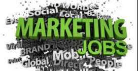 male candidates required in marketing profile