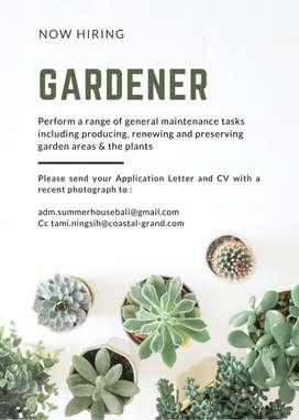 Staff Gardener Villa