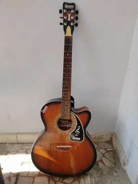 Givson Guitar with cover