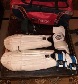 Professional cricket kit for sale