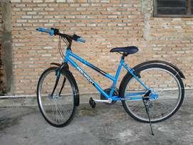 Dijual Sepeda Polygon