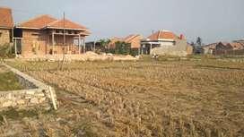 Tanah dijual siap bangun luas 180m2 di bandar lampung
