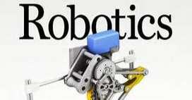 Robotics trainer for summer camp.