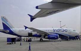 Indigo Company Ground Staff Job Vacancy Airline Industry - Airport Job