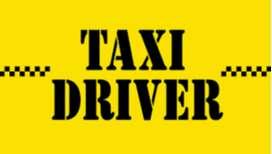 Taxi driver for  croatia