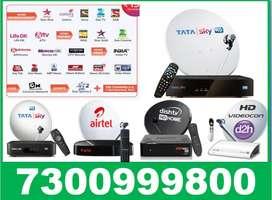 Buy 1 Year Pack Dishtv - Tata Sky, Airtel, Dishtv - Tatasky New SD/HD!