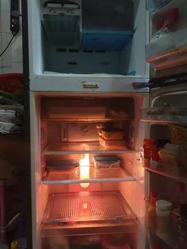 Samsung 198 Litre Double door Refrigerator
