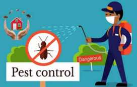 Pest control 2000 only