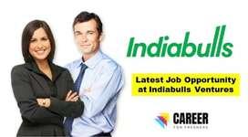 Job in Indiabulls