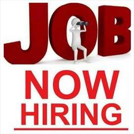 Urgent need female visa counsellor for Tourist/Study visa/HR