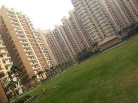 Luxury Flats-3BHK(1760 sqft) at Greater Noida-29
