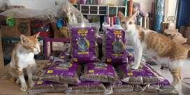 """Makanan Kucing """"BOLT"""" Untuk Kucing Kesayangan Anda"""