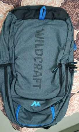 Backpack  (Bag)