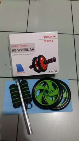 ABS roller/ AB wheel