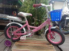Sepeda family ukuran 12