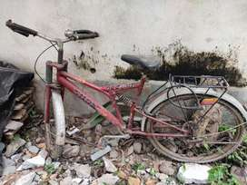 Brand-Nilam, bicycle