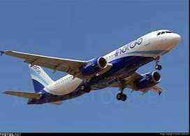 Indigo Airlines Hiring Part Time or Full Time Job at Airport intereste