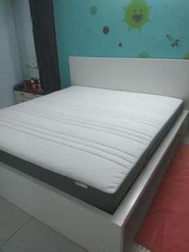 "King Size bed, IKEA MALM 16000/ King size 10"" Mettress IKEA 19000"