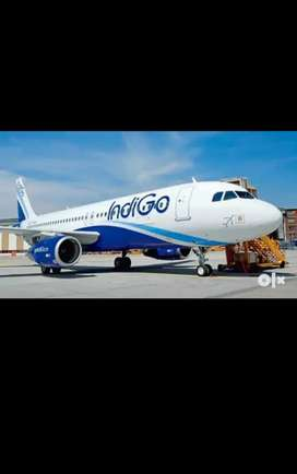Urgent hiring for ground staff and civil engineer in pune Airport