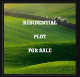 191 yard (gaj) plot for sale near IIT ROPAR(old)