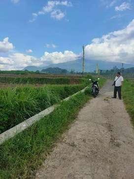 Kavlingg *Murah area Pacet Mojokerto + SHM