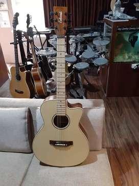Jual gitar lakewood dan takamine lagi promo