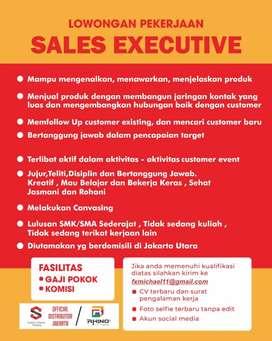 Sales Marketing Executive Jobs
