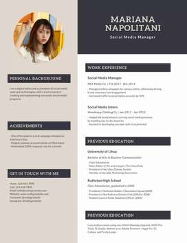 Professional Resume  (CV)