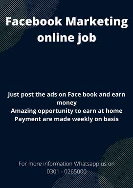 Qualified person needed for Face book Marketing online job from home
