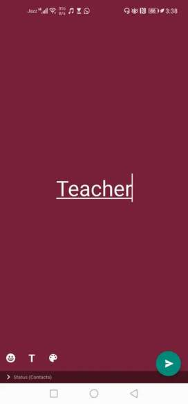 Teacher for primary students
