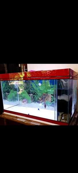 Aquarium uk.80*40*45