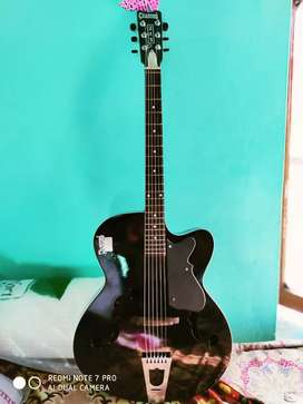 Semi acoustic guitar with cover