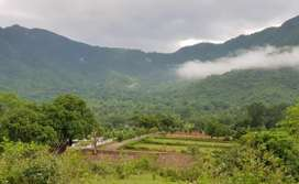 Just Rs 1699 per sq yard Farm land for sale