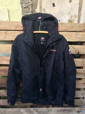 Jaket dickies original
