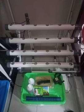Paket Lengkap Hidroponik