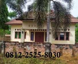 Rumah murah tanah luas siap huni di selebar bengkulu
