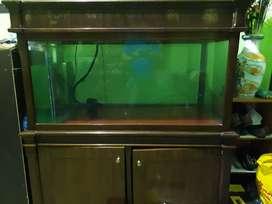 Aquarium ukuran besar